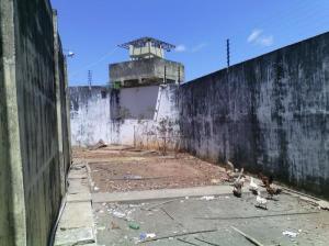 gansos-penitenciaria2